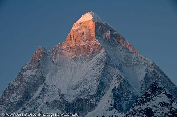 INDIA, Uttaranchal, Gangotri. Shivling (6543m) at sunrise, from Tapovan meadow. Shivling rises beyond Gaumukh, the glacial source of Ganges River