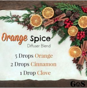 Orange Spice Diffuser Blend With Essential Oils Great Winter and Christmas Diffuser Blend