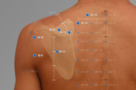 Pin by shah rizal on urut | Acupuncture points