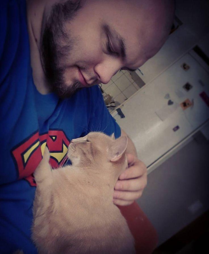 Eipä tässä muuta kuin että: #kinuskikissa #cat #gigercat #superman #beard
