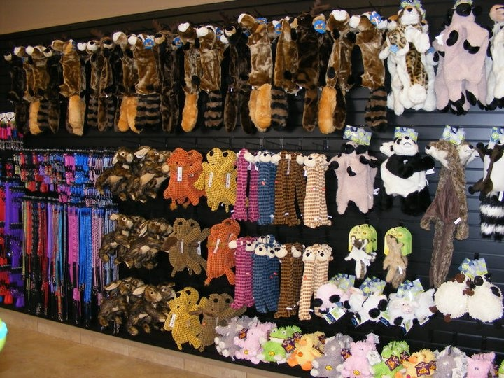 Elite Suites Pet Resort~ So many toys to choose from at our facility in Heath, TX!