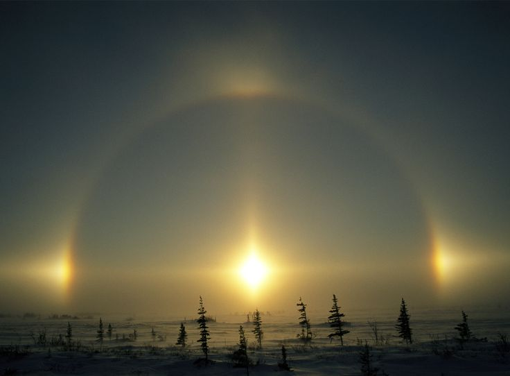 A solar phenomenon known as a sundog arcs over the tundra in Churchill, Manitoba, Canada. Sundogs are fairly common occurrences in the Arctic and Antarctic. They form when the sun is near the horizon and ice crystals high in the sky line up in a way that bends the solar rays like a prism. (Image credit Norbert Rosing)