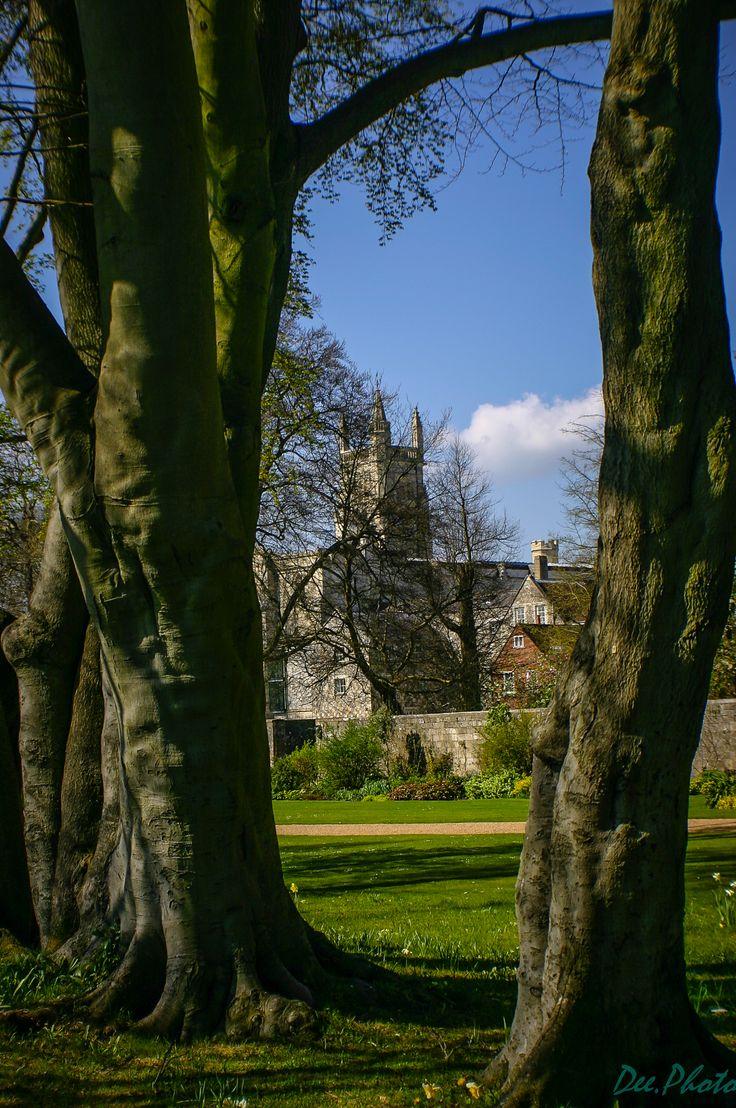 Położone nad rzeką Itchen, na zachodnim krańcu Narodowego parku South Downs, Winchester to legendarne serce Anglii. Niejednokrotnie utożsamiano to miasteczko z bajkową siedzibą króla Artura, Camelo…