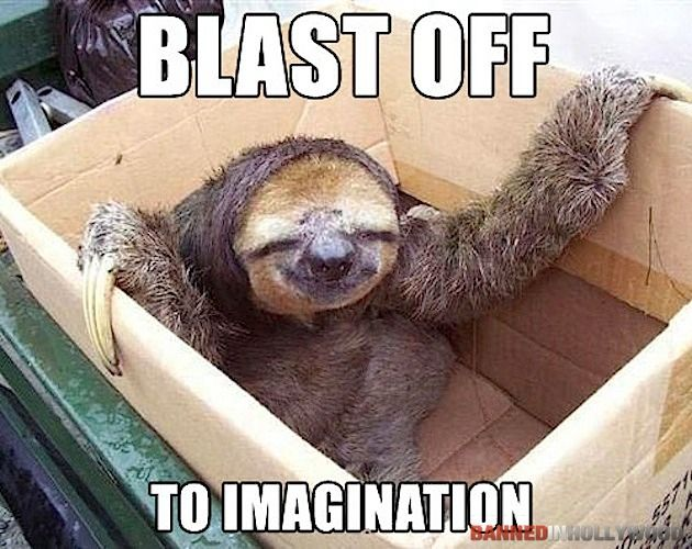 120 best images about Sloths!! on Pinterest | Baby sloth ...