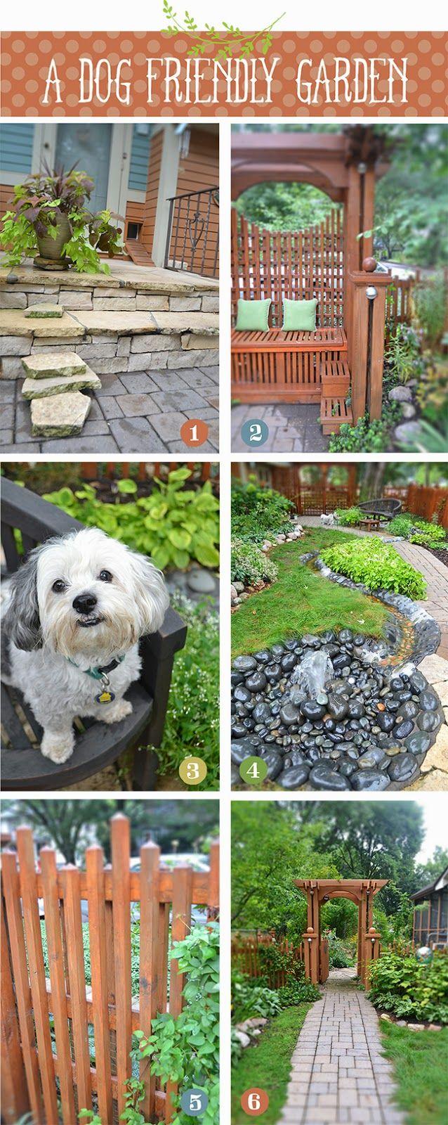 Lisa Orgler Design: A DOG FRIENDLY GARDEN