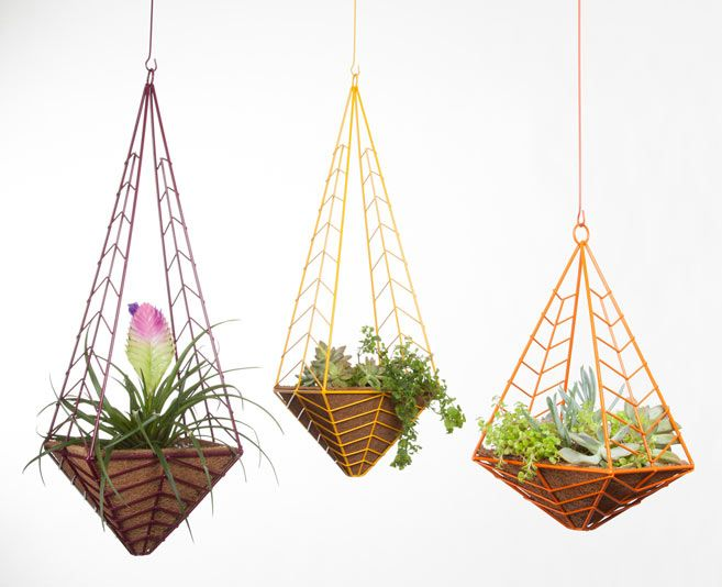 Hedge modern planters by Cora Neil