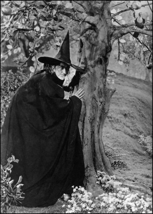 Wicked Witch of the West, The Wizard of Oz, 1939. This image is rarely seen in all the Oz books and movie stills. Great, scary pic.