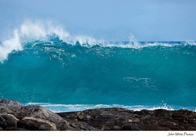Waves, great southern ocean, eyre peninsula by john white photos, via Flickr