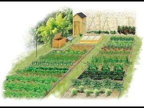 ROTATION DES CULTURE. Pour savoir organiser son potager d'une année sur l'autre, ce guide explique les principes de base de la rotation des cultures et présente des exemples d'agencement qui favorisent la production et la bonne santé des plantes.
