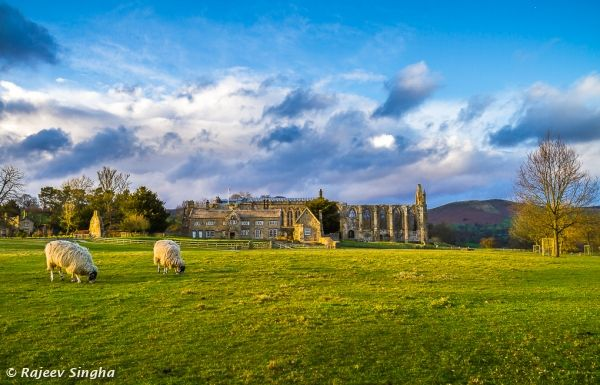 Bolton Abbey in evening light
