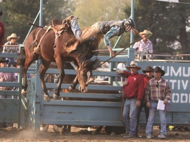 Tumut, NSW, Rodeo