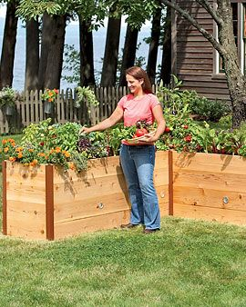 great ideas for our garden I do plan on doing!!