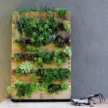 jardin suspendu palette jardinage gardening. Black Bedroom Furniture Sets. Home Design Ideas
