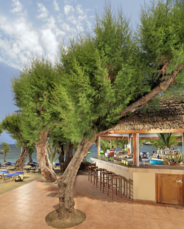 aqua marine beach bar