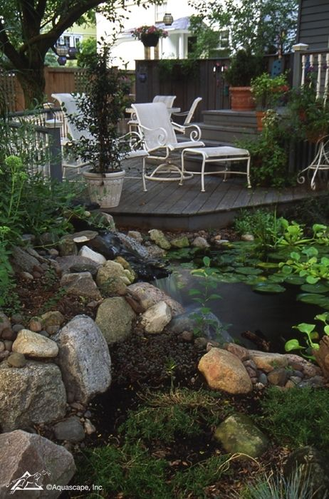 52 best beautiful backyards images on pinterest backyard for Pond shade ideas