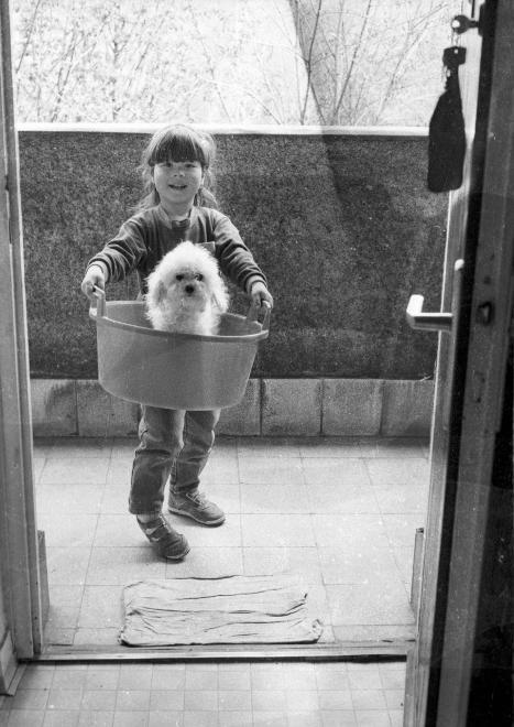Fortepan #dog