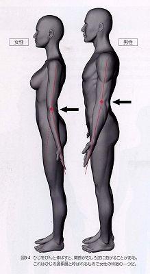 2005年12月22日・本「CGクリエーターのための人体解剖学」・97点