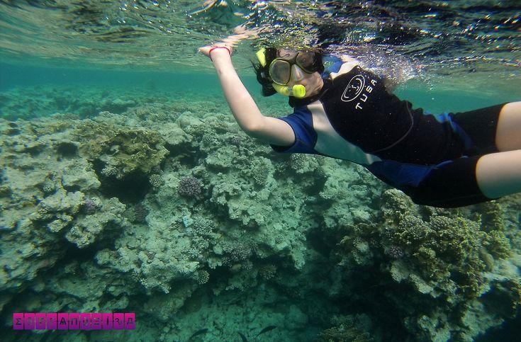 EGITO – Sharm El Sheikh, paraíso do mergulho no Mar Vermelho Ficamos 4 dias em Sharm el Sheikh, o paraíso do mergulho no Mar Vermelho (Egito). Contamos nossa experiências, valores, o que visitar e fazer!