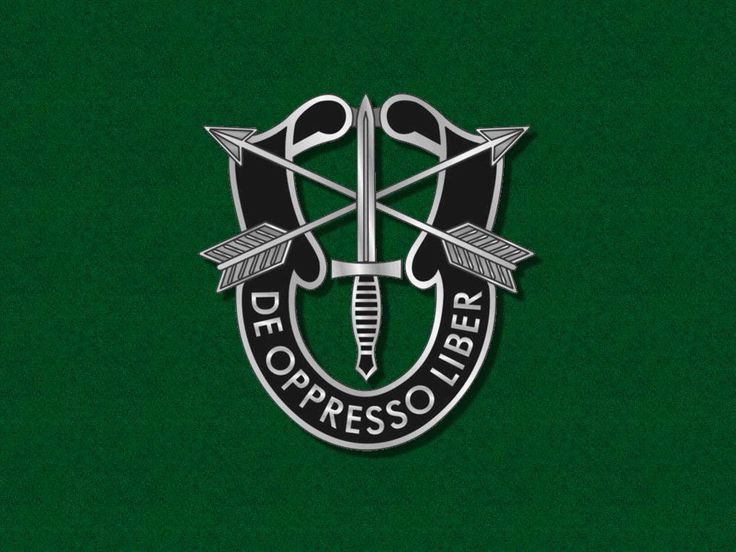 green berets special forces | special forces green berets association click here to go to special ...