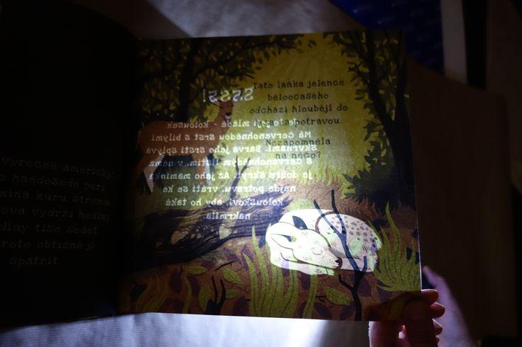 Už jste viděli tuto knížku? Zvířata jsou zde natolik maskovaná, že je objevíte jen pomocí baterky! #zvířata #knihy #books