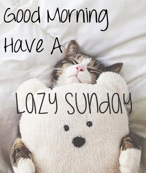 Funny Sunday Quotes 129 Sunday Quotes Happy Sunday Quotes Sunday Humor