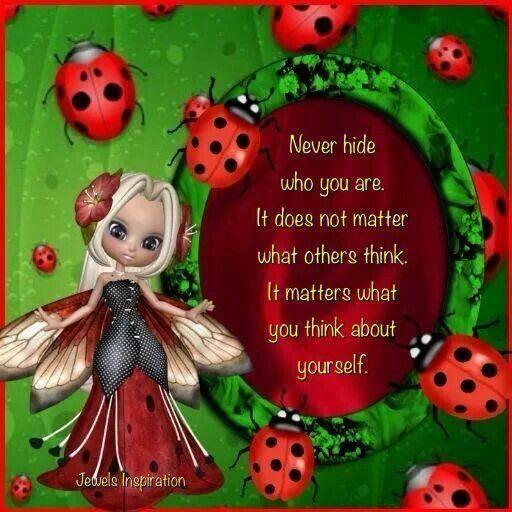 Ladybug fairy | AMUSING LADY~BUGS | Pinterest | Ladybug ...