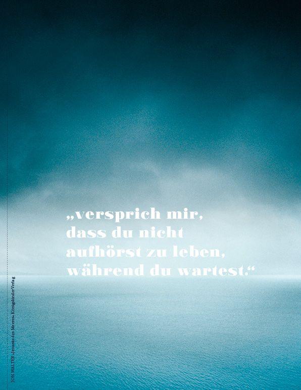 Jon Walter: Jenseits des Meeres   Ein zutiefst menschliches Buch über Krieg und Hoffnung, Flucht und Heimat.
