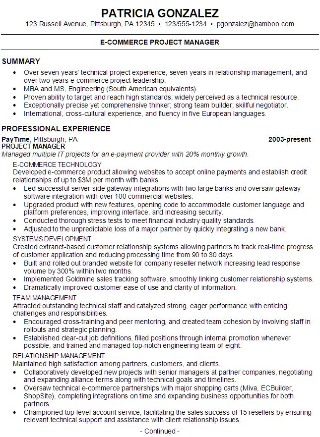 Resume E Commerce Project Manager Resume Summary Resume Summary Statement Resume Summary Examples