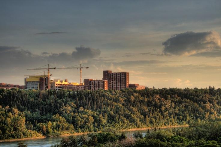 Google Image Result for http://upload.wikimedia.org/wikipedia/commons/c/c9/Cranes_University_of_Alberta_Edmonton_Alberta_Canada_01_A.jpg