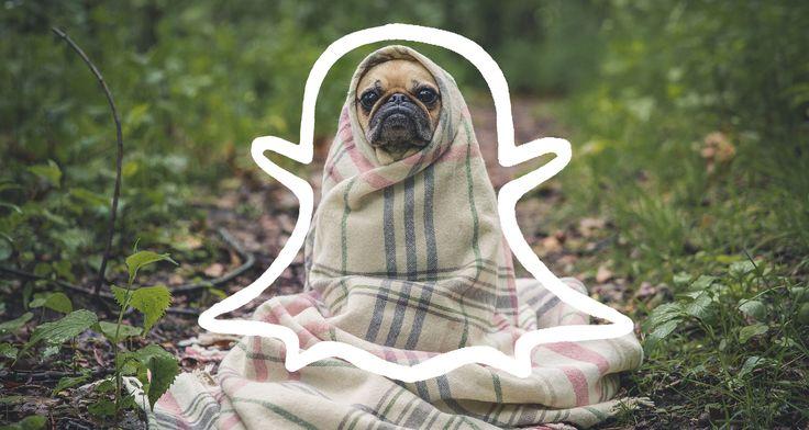 Snapchat and 2016 Social Media Trends