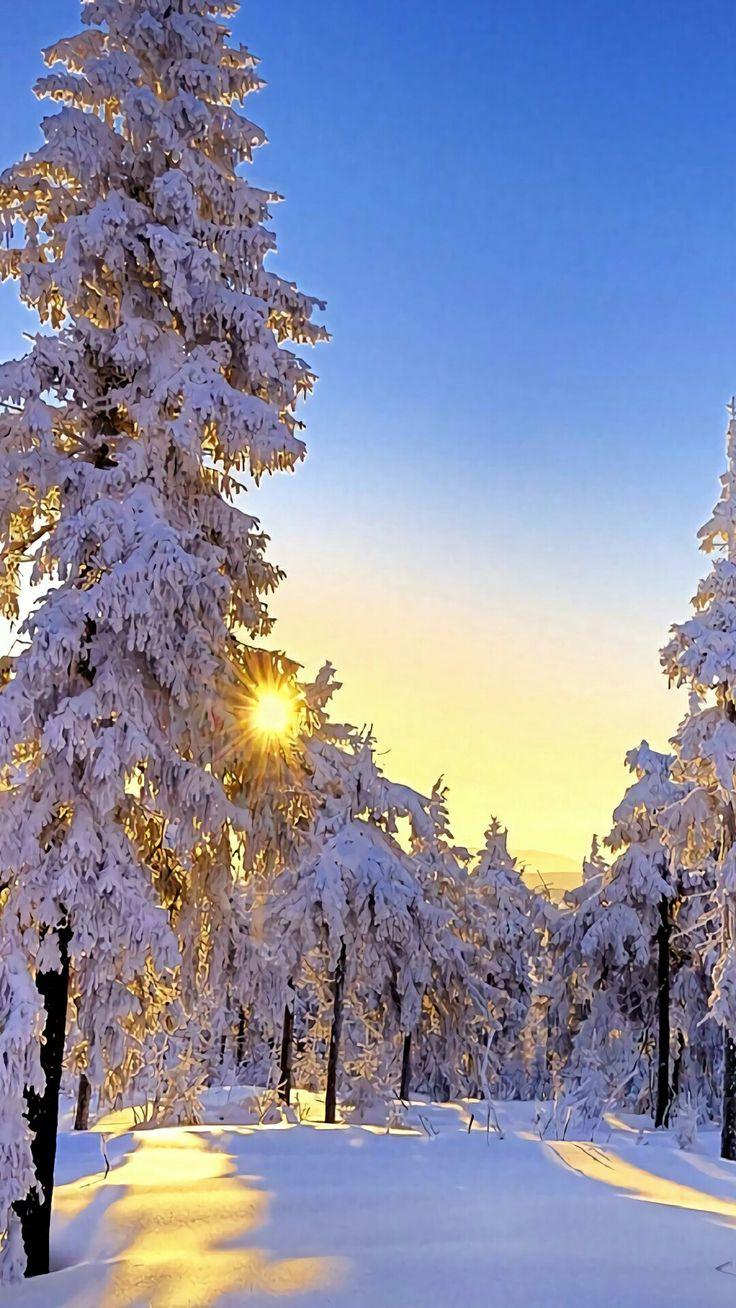 138 besten winterbilder bilder auf pinterest weihnachten. Black Bedroom Furniture Sets. Home Design Ideas