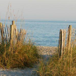 Wilmington's Welcoming Beaches