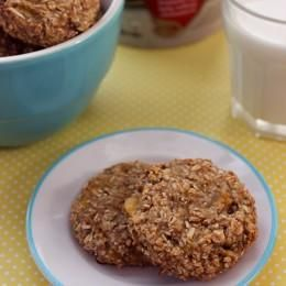 Two ingredient Oatmeal Banana Cookie Recipe via @Dawn Lopez/ //  #banana #oatmeal #recipe   Make these delicious cookies with only 2 ingredients!