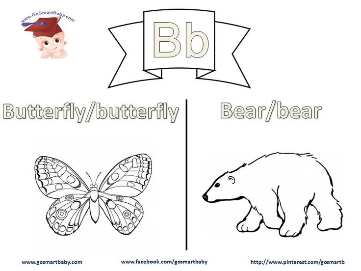 In this worksheet, letter B, a Butterfly and  a Bear are two things your child can easily relate to in their life. Help them color each word in uppercase and in lowercase, then enjoy coloring the object itself with the color of their choice.