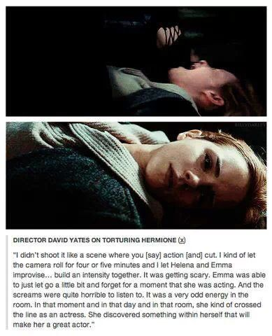 Acting - Hermione's torture by Bellatrix... Powerful stuff! Harry potter meme