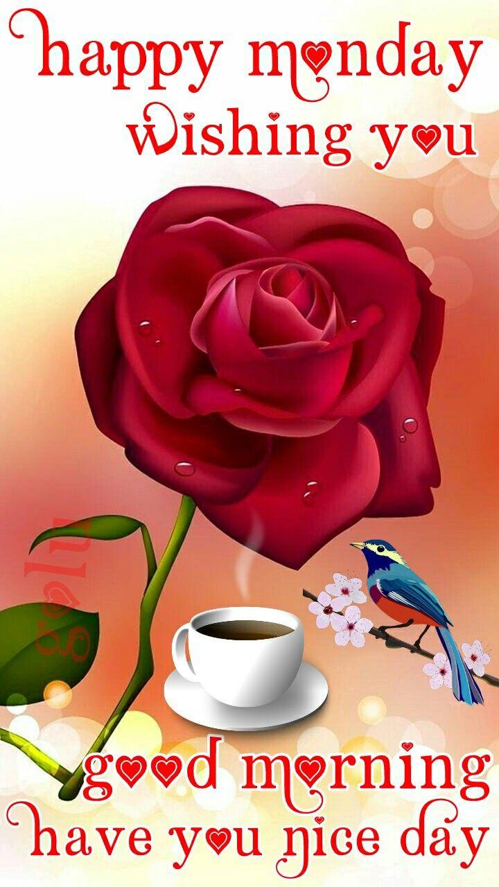 Good Morning Whatsaap Status Pic New Pic Hindi Pic Bhakti Pic Good
