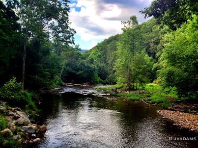 17 Best Images About West Virginia Usa On Pinterest