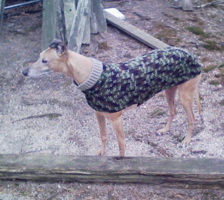 Magnificent Crochet Greyhound Pattern Elaboration - Easy Scarf ...