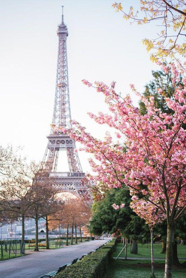 Spring Break In Paris: 5 Days For Under 500 Euros