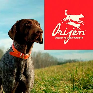 Descubre los alimentos para perros Orijen. De origen canadiense, los alimentos para perros Acana y Orijen son Biológicamente Apropiados™, cualidad por la que han sido galardonados. Elaborados sólo con ingredientes frescos locales y cocinados en las propias cocinas de la marca de forma natural.