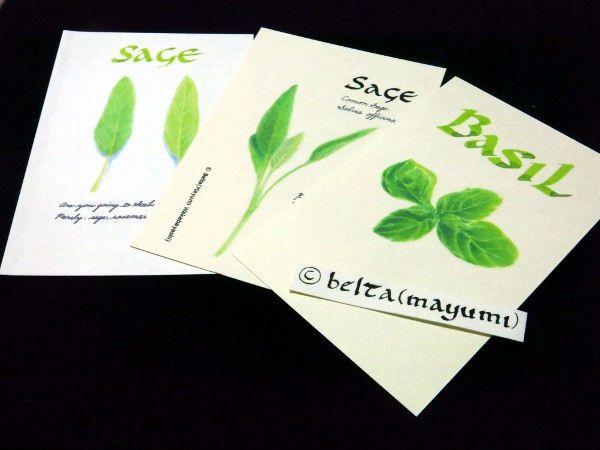 herb_2014_10_24_01 I made some postcards for my friends.  © Belta(WAKABAYASHI Mayumi)