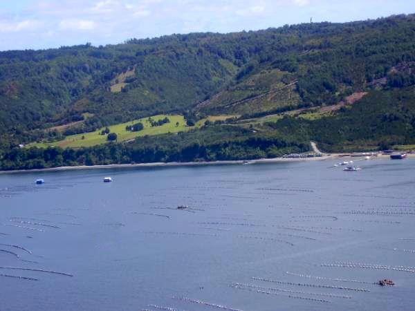Terreno con Orilla de Playa en Quellón, Chiloé