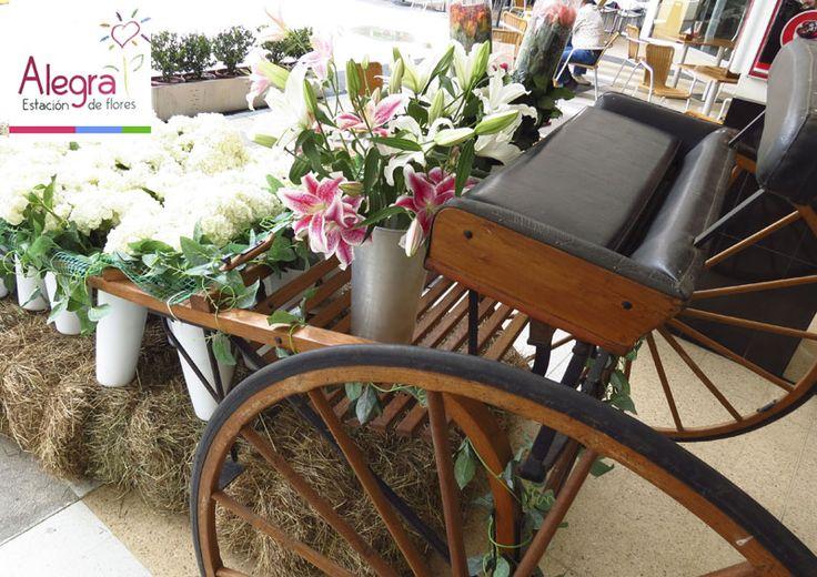 En el Mall del Este tenemos las flores más frescas para que te las lleves a casa. Reconoce nuestra estación móvil…