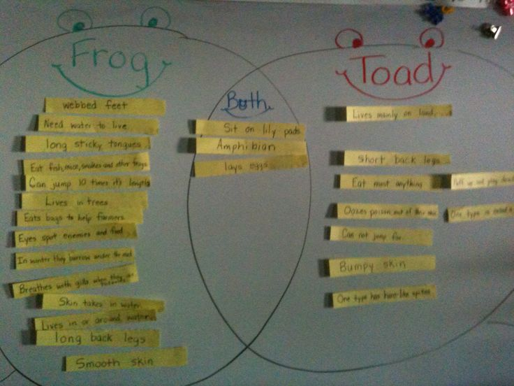 Venn Diagram For  U0026quot Frogs And Toads U0026quot