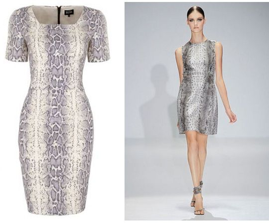 Get the Gucci ss13 snakeskin dress on the highstreet, M to be precise