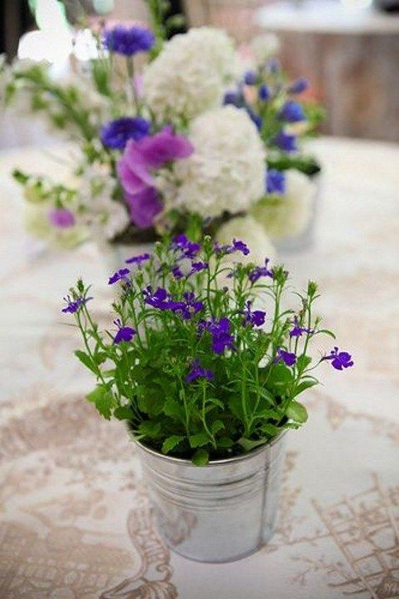 potted plant wedding centerpieces / http://www.himisspuff.com/potted-plants-wedding-decor-ideas/7/