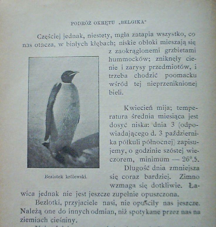"Primum Navigare: ""Belgica"", cenzura, kucharze i pingwiny…"