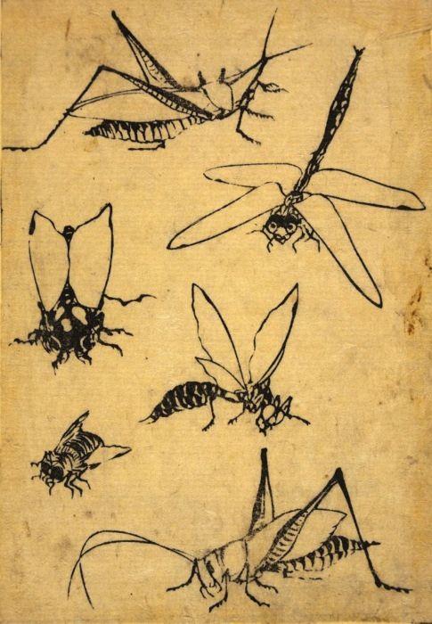 "Woodblock print, page from the ""Mangura"". Katsushika Hokusai."