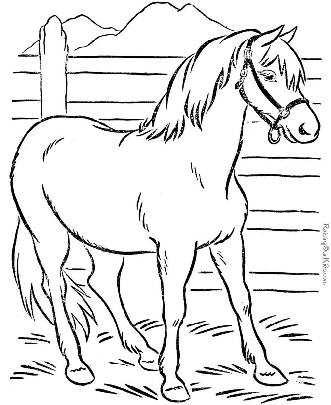 Animal Coloring Page of Horse to Print | Places to Visit | Pinterest ...