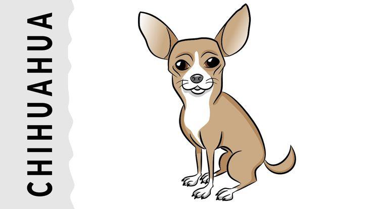 Cómo dibujar un perro Chihuahua paso a paso con dibujart.com